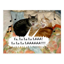 Singing Cats Postcard