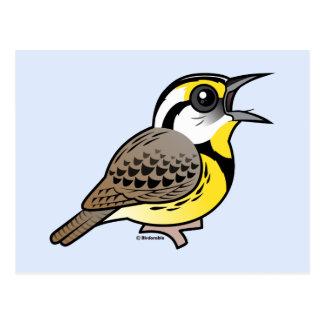 Singing Eastern Meadowlark Post Cards