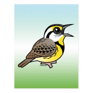 Singing Eastern Meadowlark Post Card