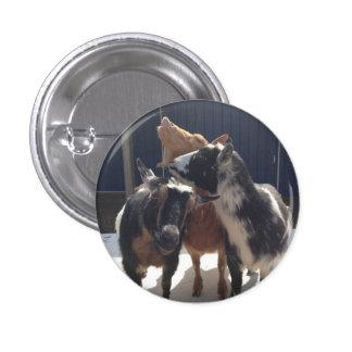 Singing Goats Pins