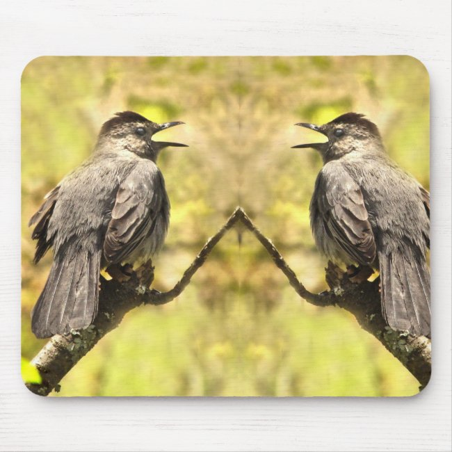 Singing Gray Catbirds Mousepad