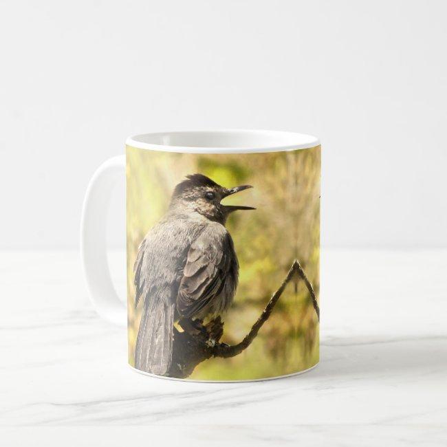Singing Gray Catbirds Mug