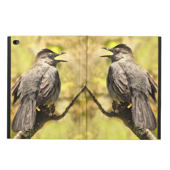 Singing Gray Catbirds Powis iPad Air 2 Case