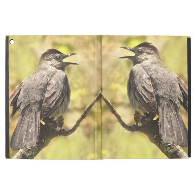 Singing Gray Catbirds Powis iPad Pro Case