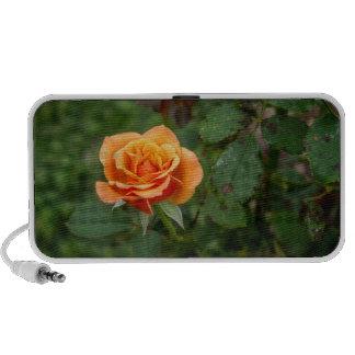 Singing in the Rain Rose Portable Speaker