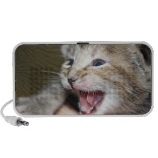 singing kitty iPod speaker