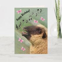 Singing Sheep Happy Birthday Card