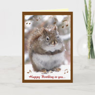 Singing Squirrel Birthday Greeting Cards