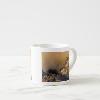 Singing Squirrel Espresso Cup