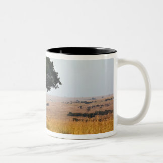 Single acacia tree on grassy plains, Masai Mara, Two-Tone Coffee Mug