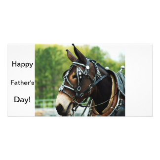 single black mule photo card