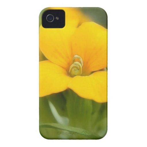 Single Bloom - Wallflower Case-Mate Blackberry Case