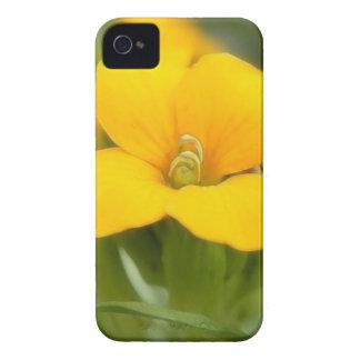 Single Bloom - Wallflower iPhone 4 Case-Mate Cases
