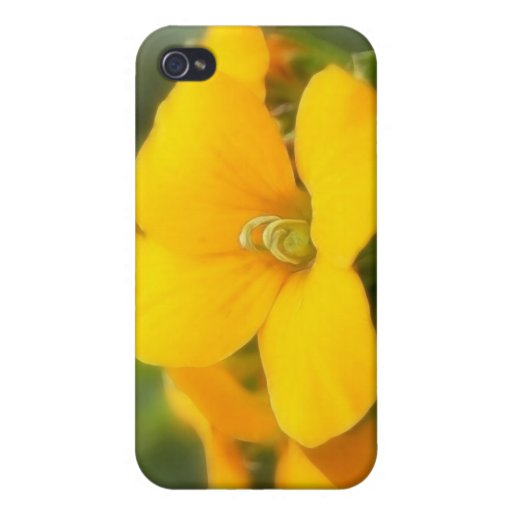 Single Bloom - Wallflower Covers For iPhone 4