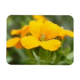 Single Bloom - Wallflower Flexible Magnets