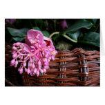 Single Blossom Cards