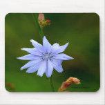 SIngle Blue Flower Mousepad