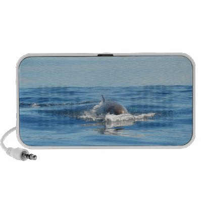 Single Bottlenose Whale iPhone Speakers