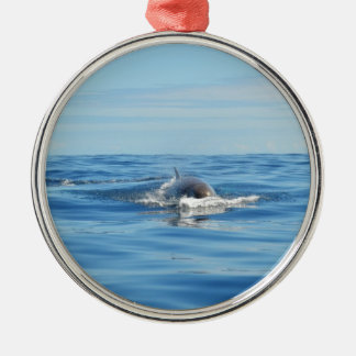 Single Bottlenose Whale Round Metal Christmas Ornament