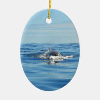 Single Bottlenose Whale Double-Sided Oval Ceramic Christmas Ornament
