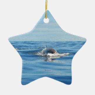 Single Bottlenose Whale Double-Sided Star Ceramic Christmas Ornament