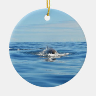 Single Bottlenose Whale Double-Sided Ceramic Round Christmas Ornament