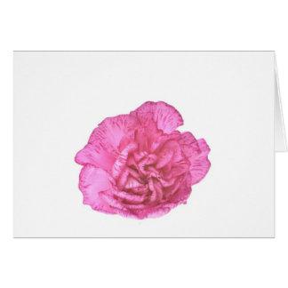 single carnation flower note card
