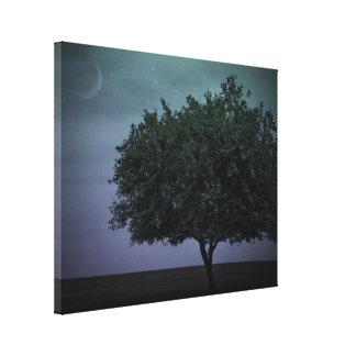 Single Country Tree Canvas Print