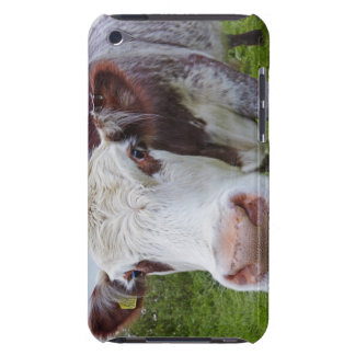 Single cow peerring into camera iPod touch covers