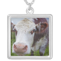 Single cow peerring into camera silver plated necklace