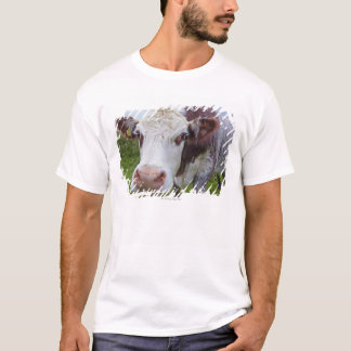Single cow peerring into camera T-Shirt