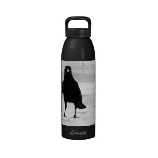 Single Crow In Snow Reusable Water Bottles