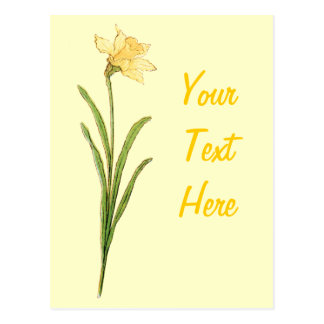 Single Daffodil Illustration by Kate Greenaway Postcard