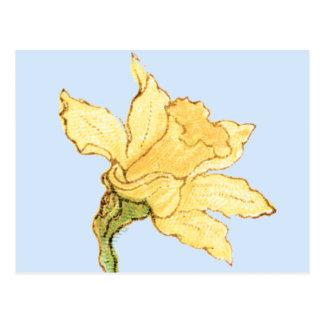 Single Daffodil Illustration by Kate Greenaway Postcard