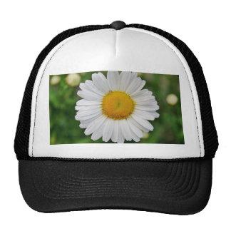 Single Daisy Flower Trucker Hat