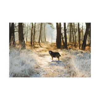 Single dog waiting ahead in path covered by frost canvas print