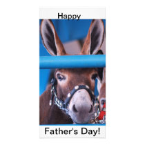 single donkey card