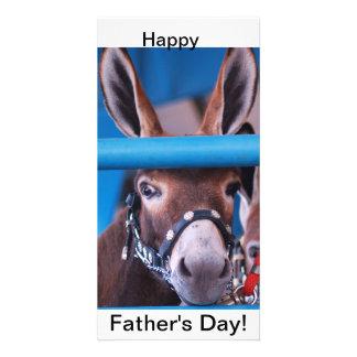 single donkey photo card
