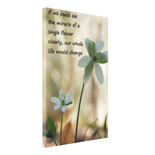 Single Flower Canvas Prints