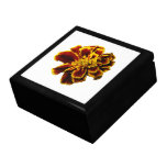 Single French Marigold Jewelry Boxes