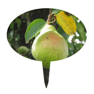 Single green pear hanging on the tree cake topper