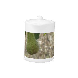 Single green pear hanging on the tree teapot