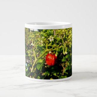 single habanero red pepper in plant large coffee mug