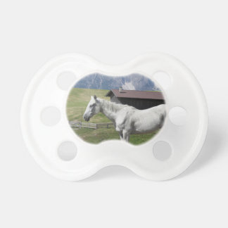 Single horse in an alpine pasture pacifier