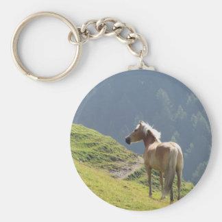 Single horse in an alpine pasture . Sesto Dolomite Keychain