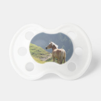 Single horse in an alpine pasture . Sesto Dolomite Pacifier