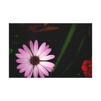 Single Lavender Flower on Canvas