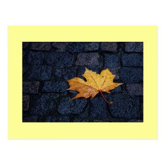Single Leaf Postcard