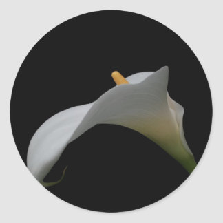 Single Lily Classic Round Sticker