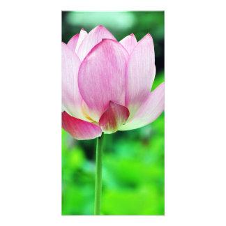 Single Lotus Flower Design Card